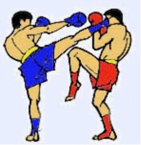 кикбоксинг,тайский бокс,ММА